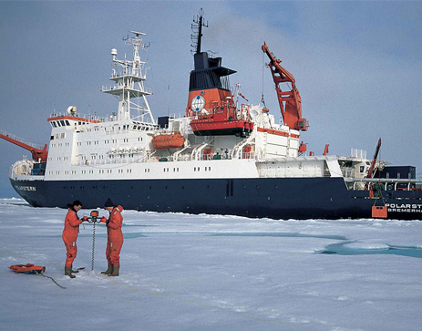 Alfred Wegener Institute for Polar and Marine Research - AWI